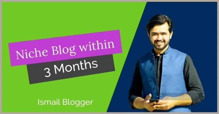 Build a Profitable Niche Website within 3 months